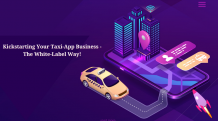 Taxi-App Business