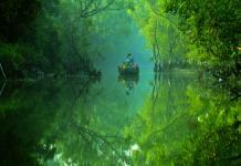 Kolkata to Sundarban Package Tour