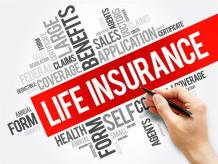 Common Life Insurance Policy Terms, definition and Types - How To -Bestmarket