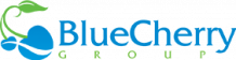 Paid Search Engine Management & Marketing Agency - Blue Cherry Group