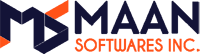 website development company   web development company USA