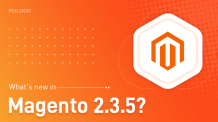 Magento 2.3.5 released- A quick overview of the new features! - Pixlogix