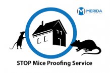 Why is it important to hire Pest Control Professionals?