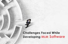 Challenges faced during MLM Software development