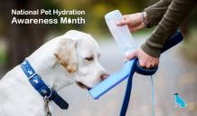 National Pet Hydration Awareness Month - CanadaPetCare