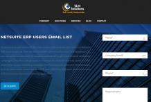 Netsuite ERP users list