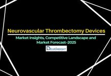 neurovascular-thrombectomy-devices-market-size-share-medical-mechanism-companies-products-competitive-forecast-kol-trends-industry-pest