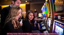 What can make new bingo sites interesting?