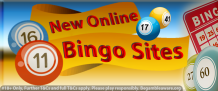 Things to play wish for new online bingo sites