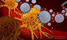 Oncogenomics for Cancer Treatment in Gurgaon | MDRC India