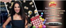 Celebrate online bingo games 2019 in Quid Bingo