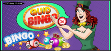 Know the starting online bingo site UK networks