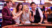 Good online bingo software ensures good online bingo sites |