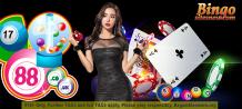 Online bingo sites basics for beginners!