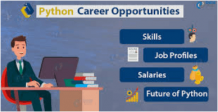 Is a career with a Python programming language a better option?