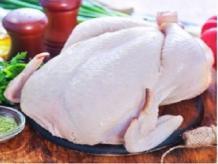 Frozen Whole Chicken|PMIP