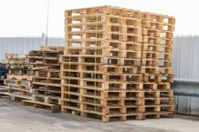 Wood Supplier in Udaipur, Timber in Udaipur   Chhabra Timbers
