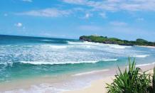 Pesona alam dan biota Laut di wisata pantai Krakal Gunung Kidul Jogja