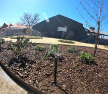 Customised Reticulation Systems in Perth | Alessio's Gardens
