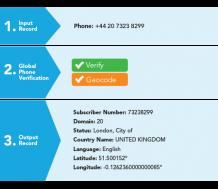 Phone Number Verification and Validation Service | Melissa SG