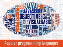 Which Are The Top 7 Programming Languages For Software Development? - Zaptech Solutions