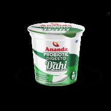 Dahi   Dahi Packet   Curd Yogurt   Homemade Curd