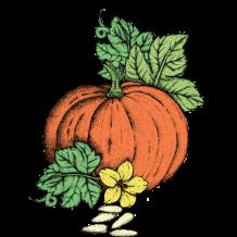 Red Pumpkin Seed Oil
