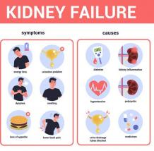 The Best Ayurvedic For Renal Failure Treatment