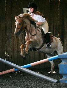 Horse Riding in London and Essex | High Beech Riding School