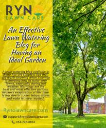 The best lawn watering practices for having a healthy and green yard