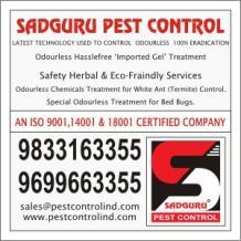 Best Pest Control Services in Mumbai | Pest Control Treatment in Mumbai
