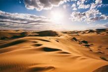 Desert Greening Project, Breathable Pots | Watersavingsand