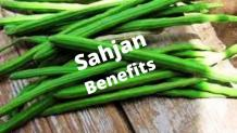 Sahjan Benefits According To Ayurveda For Your Health