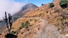 Sandakphu Phalut Trekking Package from NJP
