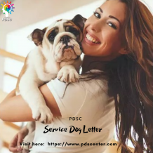 How service dog letter is crucial for traveling? | Service Dog Letter | PDSC
