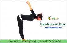 Standing yoga seal pose