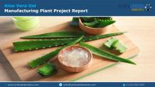 Aloe Vera Gel Manufacturing Plant Project Report Growth