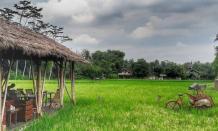 Tempat Makan di Magelang Paling Enak & Murah