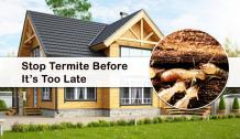 Best Way to Keep Termite Away from Your Home?