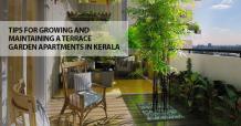 11 Best Tips for Terrace Garden in Apartments of Kerala