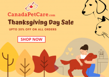Thanksgiving Day Coupons & Discounts - Order Online Pet Supplies