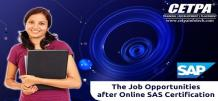 The Job Opportunities After Online SAS Training