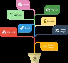 WordPress Development Services   Custom WordPress Development