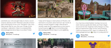2 Different Ways To Embed Twitter Hashtag Feed On The Website