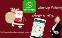 Use Whatsapp Filter Tools & Bulk WhatsApp marketing software