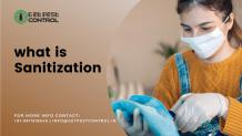 What is sanitization? All you need to know!