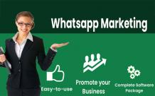 WhatsApp Marketing Software Support | Bulk Whatsapp Marketing Software