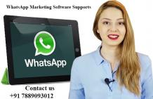 Bulk WhatsApp Marketing Software | WhatsApp Marketing Software Supports