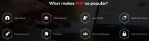 uCoz-Why PHP Programming is Popular Among Developers Across the Globe?