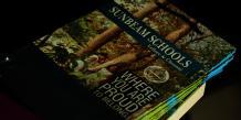 Best Play schools in Vellore   Montessori pre school Vellore
